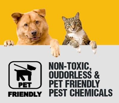 Pet Friendly Pest Chemicals